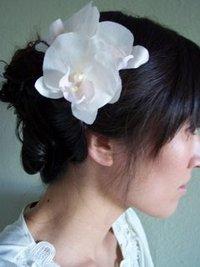 Orchids_5